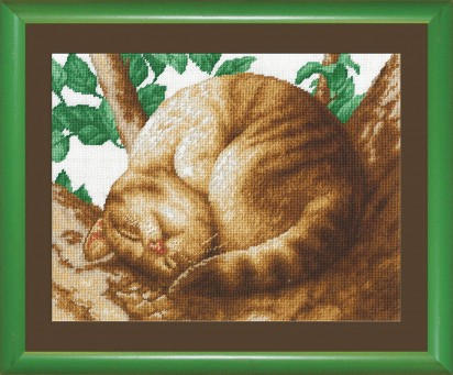 Cat - Counted Cross Stitch Kit with Color Symbolic Scheme