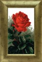 Red Rose - Counted Cross Stitch Kit with Color Symbolic Scheme