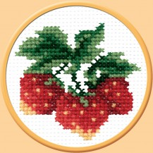 Wild Strawberry - Stamped Cross Stitch Kit with Water Soluble Color Scheme