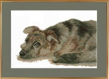 Sad Dog - Counted Cross Stitch Kit with Color Symbolic Scheme
