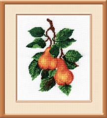 Pear - Counted Cross Stitch Kit with Color Symbolic Scheme