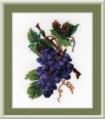 Grapes - Counted Cross Stitch Kit with Color Symbolic Scheme