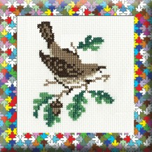 Song Thrush - Counted Cross Stitch Kit with Color Symbolic Scheme