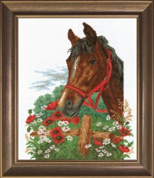 Horse In The Macs - Counted Cross Stitch Kit with Color Symbolic Scheme
